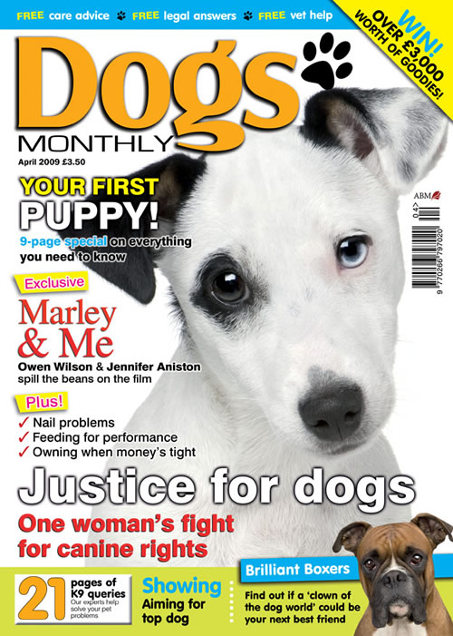 marley and me puppy. MARLEY amp; ME EXCLUSIVE!