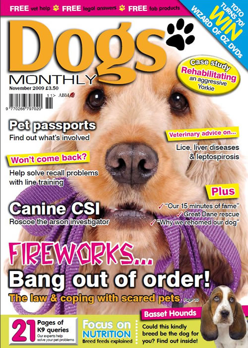 dogs monthly magazine dogs monthly magazine november