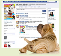 Dogs Monthly facebook page